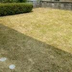 草引き作業後