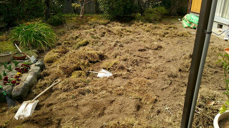 芝生をめくった状態