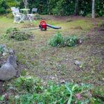 長期お留守宅の除草作業